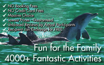 4000+ Fantastic Activities