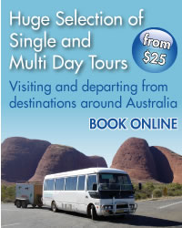 Single and Multi Day Tours