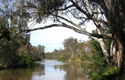 A View Of The Goulburn River