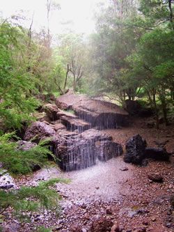 Drops In Paradise Paradise Falls Victoria