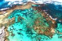 The Reefs Of Rottnest