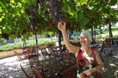 Swan Valley Indulgence Winery Tour -