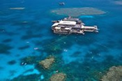 Agincourt Outer Barrier Reef Cruise -