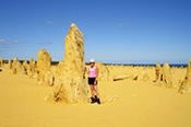 1 Day Pinnacles, Dunes and Beaches Tour - Bushwalking, Nature & Wildlife
