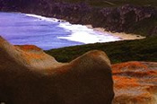 2 Day Kangaroo Island Tour -