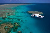 Agincourt Ribbon Reef Cruise with Snorkelling Tour -