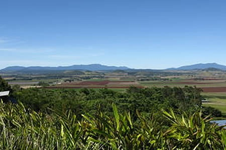 Atherton Tablelands Food, Wine and Rainforest Tour -