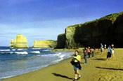 1 Day Great Ocean Road Experience -