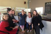 Geelong and Bellarine Full Day Winery Tour - Melbourne CBD