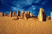 Pinnacles, New Norcia and Wildflowers Luxury Coach Tour -