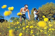 Perth's Best Wildflower Tour -