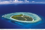 Day Trip with Scenic Flight to Lady Elliot Island -