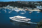 Main and Middle Harbour Coffee Cruise -