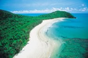 4WD Cape Tribulation, Daintree and Mossman Gorge Day Tour -