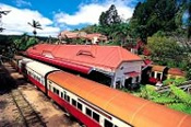 Kuranda, Scenic Rail and Skyrail Day Tour -