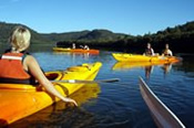 Wine and Oyster Tasting Kayaking Tour -