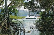 Cairns Harbour Cruise -