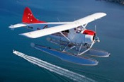 Seaplane Flight and Lunch at Jonah's Whale Beach -