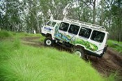 Full Day 4WD Window to the Wilderness Tour -