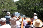Noosa Everglades BBQ Lunch River Cruise -