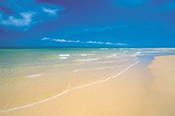 Fraser Island 1 Day Discovery Tour -