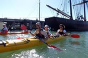 Sea Kayak Williamstown Half Day Tour -