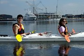 Sea Kayak Melbourne Half Day Tour -