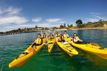 Sea Kayak Dolphin Sanctuary Coastline Tour -