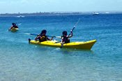 Sea Kayak Coastline Tour -