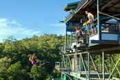 Barron Rafting and Bungy Jump in One Day -