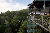 Bungy Jump and Cape Tribulation Tour - Bungy & Swing