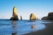 Great Ocean Road Day Tour - Gold Class -