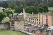 Port Arthur Day Tour - Bushwalking, Nature & Wildlife