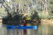 Canoeing Safari on the Goulburn River -