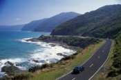 One Day Great Ocean Road Surfing Tour