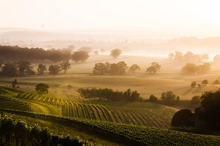Hunter Valley Wine Country Food and Wine Lovers Scenic Flight and Tour