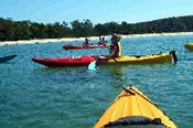 Bundeena to Audley Eco Kayak Adventure -