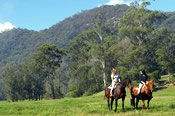 8 Private Horse Riding Lessons - Horse Riding