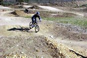 Half Day Majura Winery Mountain Biking Experience -