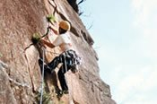Half Day Rock Climbing Adventure -