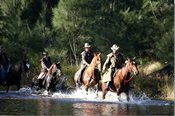 Deluxe Cox's River Full Day Trail Ride with Lunch -