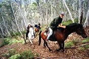Full Day Horse Riding Adventure -