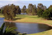 Round of Golf and Cart Hire - Surfers Paradise