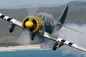 Combat Warbird Flight for Two -