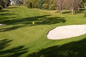 Round of Golf and Cart Hire -