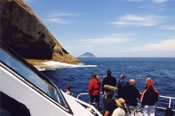 Wilsons Promontory Full Day Eco-Cruise -