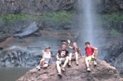 Guided Minyon Falls Rainforest Short Walking Tour -
