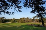 18 Holes on a Championship Course and Lesson -