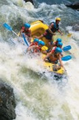 Full Day Tully River Rafting Adventure - White Water Rafting