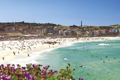 Sydney Sights and Bondi Beach Afternoon Tour -